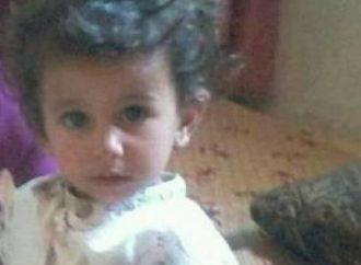 العثور على طفلة اردنية نهشتها كلاب ضالة حتى الموت