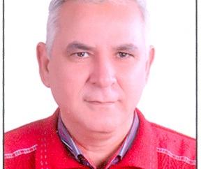 القوى الغربية والانقلابات القططية – بقلم : د . عبد الوهاب القرش