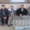 ابو عرسان وشقاوة الفتى الفلسطيني – بقلم : علي بدوان