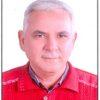 الأوثان الحجرية وتزوير العملية الانتخابية- بقلم : د . عبد الوهاب القرش