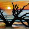 حديثُ البحرِ – بقلم : راوية وادي – فنانة فلسطينية تقيم في كندا ..