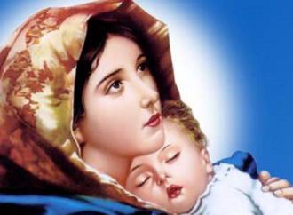 في حوار مع الطاهرة البتول – سلام الله على مريم العذراء بقلم د .سمير محمد ايوب – الاردن